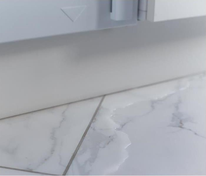 standing water laying on white marble bathroom floor
